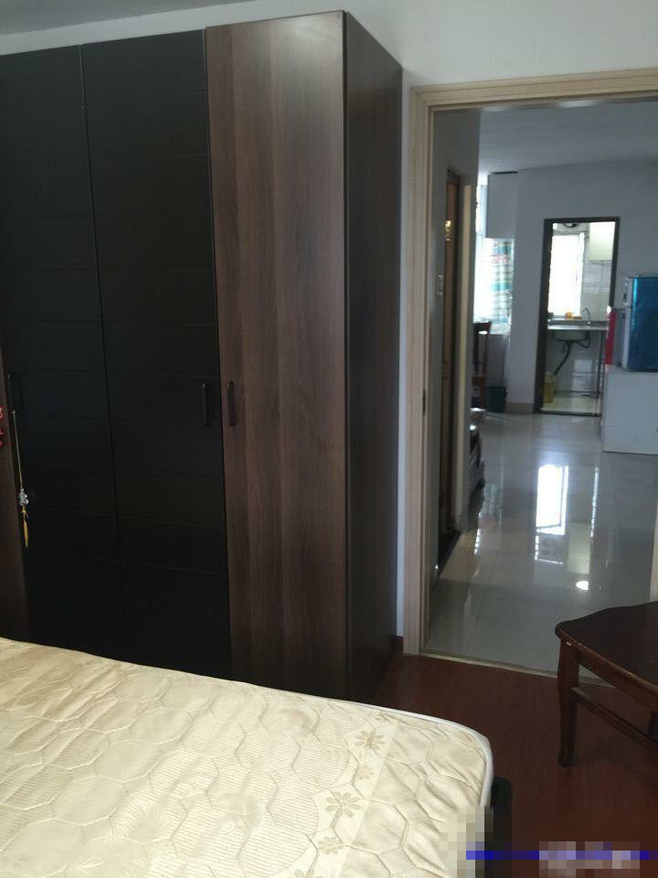 苏溪桥芝华室电梯高层单身公寓出租,家电齐全,拎包入